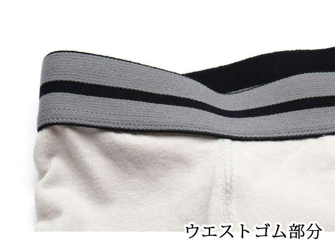 【38296】しっかりサポート・トランクス【300cc】【M/L/LL】日本製/失禁男性用