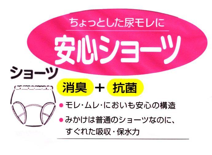 【ニシキ】【B484】【腰レースショーツ】安心ショーツ【パッド部50cc】【3L】ベージュのみ/綿100%/日本製/尿漏れショーツ失禁女性用